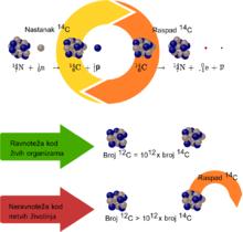Kurznote zur Methode der radioaktiven Kohlenstoffdatierung