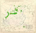 CL-37 Pinus yunnanensis & Pinus tabulaeformis range map.png