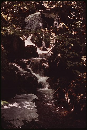 Anne LaBastille - Image: CREEK BESIDE TRAIL UP ALGONQUIN PEAK, IN THE HIGH PEAKS REGION WEST OF LAKE CHAMPLAIN NARA 554408
