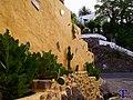 Cactus en la pared - panoramio.jpg