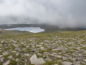 Cairngorm Plateau Disaster - Ben Macdui from the Cairngorm Plateau in June 2014