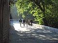 Calle en Venados SLP - panoramio.jpg