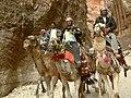CamelsPetra.jpg