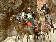 CamelsPetra