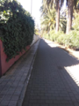 Camino Largo3.png