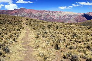 Camino al Cerro de los 14 Colores - Humahuaca Cerro Hornocal.JPG