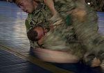 Camp Lemonnier Combatives Tournament 170113-F-QX786-0333.jpg