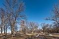 Campsites at Buffalo River State Park, Minnesota (41469112894).jpg