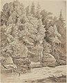 Carl Wagner, Wooded Cliffs along a Stream, 1840s, NGA 138750.jpg