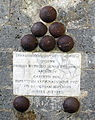 Castello di Belcaro, palle di cannone dell'assedio di siena, 1554.JPG