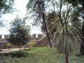 Castelo de Torres Novas (28).JPG
