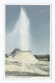 Castle Geyser, Upper Basin, Yellowstone Ntl. Park, Wyo (NYPL b12647398-68022).tiff