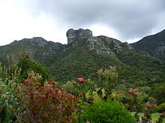 Castle Rock from Kirstenbosch.jpg