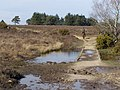 Causeway across the Silver Stream, New Forest - geograph.org.uk - 397048.jpg