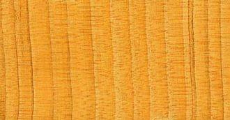 Metzora (parsha) - Cedar wood