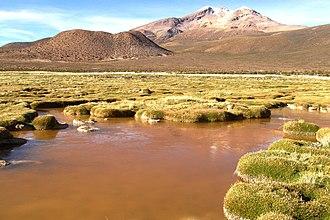 Arica y Parinacota Region - Parinacota (volcano) and Chungara lake