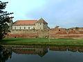 Cetatea Fagaras - vedere generala.jpg
