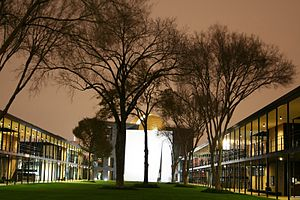 Dominique de Menil - Strake and Jones Halls, designed by Philip Johnson, University of St. Thomas, Houston