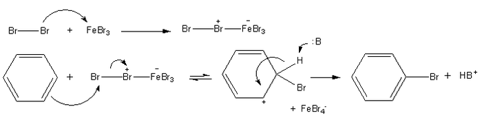 The mechanism for bromination of benzene