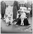 Children feeding pigeons in Leipzig, Germany 1937 (6081777035).jpg