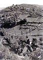 Chipole 1947.jpeg