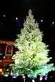 Christkindlmarkt - Swarovski Christmas Tree at Zurich Hauptbahnhof (Ank Kumar) 08.jpg