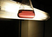 fb3e12e6ce Chromium(II) acetate (aqueous solution)