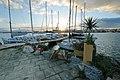 Circolo Nautico NIC Porto di Catania Sicilia Italy Italia - Creative Commons by gnuckx - panoramio - gnuckx (143).jpg