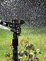 City of London Cemetery Memorial Garden sprinkler 6.jpg