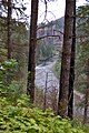 Clackamas Wild and Scenic River (27905354972).jpg
