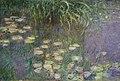 Claude monet, Ninfee e Nuvole, 1920-1926 (orangerie) 05.JPG
