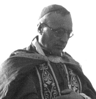 Clément Roques French Cardinal of the Roman Catholic Church