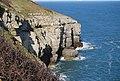 Cliffline just west of Durlston Head - geograph.org.uk - 766266.jpg