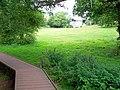 Cockington Court Cricket Pitch - geograph.org.uk - 49773.jpg