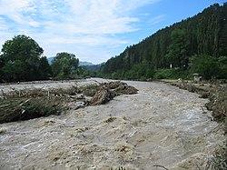 Comanesti Trotus flood 2004.jpg
