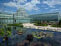 Como Park Zoo and Conservatory - 15.jpg