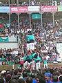 Concurs de Castells 2008 P1220354.JPG