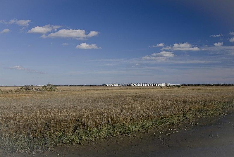 File:Condos across marsh - panoramio.jpg
