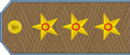 CoronelGeneralFAArmenia.png