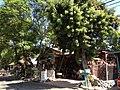 Cottage Home & Garden on 31720 Los Rios St.JPG