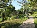 Country Garden Central Park.jpg