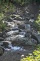 Crnovrška reka slapovi.jpg