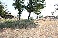 DÜZORMAN CASTLE . DÜZORMAN KALESİ - panoramio (6).jpg