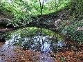 D-NW-Vlotho - Bonstapel - Naturlehrpfad - Sieben Quellen.jpg