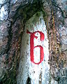 DDHeide Wegzeichen Kreuz6 geschnitten.jpg