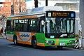 Day 3 - bus (46669562692).jpg