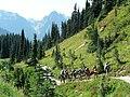 Dead Horse Creek trail (cd5bd793a9554e5793d6db436051832a).JPG