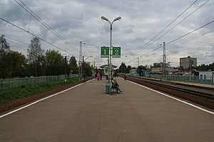 Dedovsk railstation.jpg