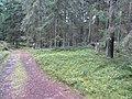 Degučių sen., Lithuania - panoramio (192).jpg