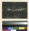 Dessous de forêt (d'après une étude de Théod. Rousseau) (NYPL b14917511-1215224).tiff